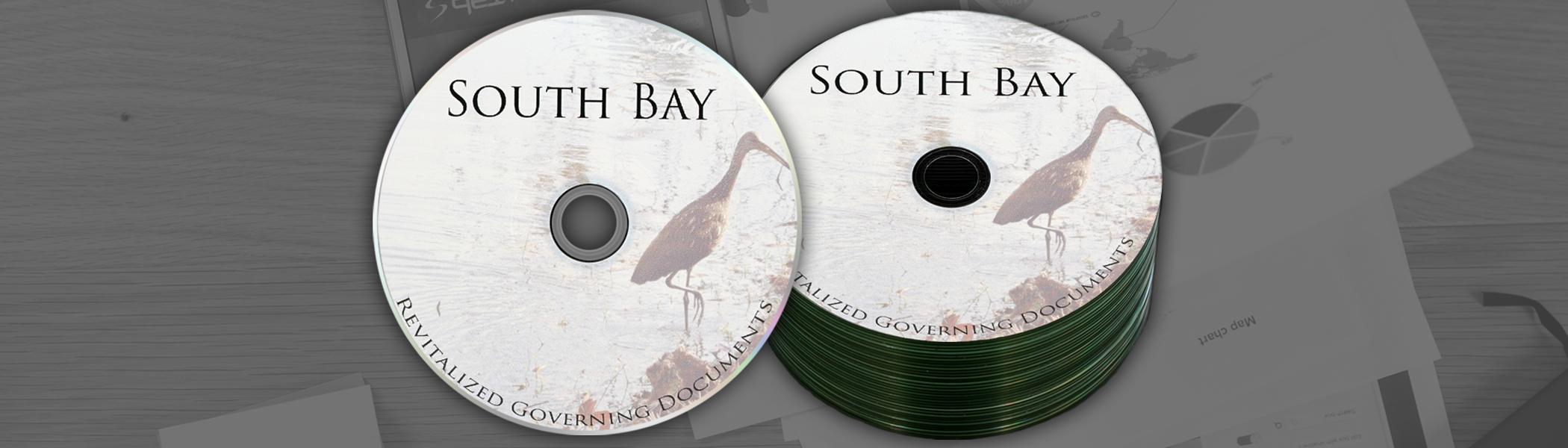 Blank Printed CDs