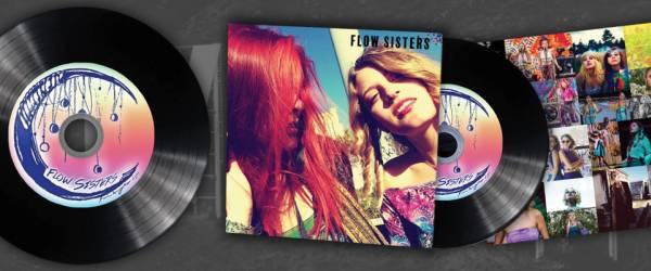 Vinyl CDs in Sleeves
